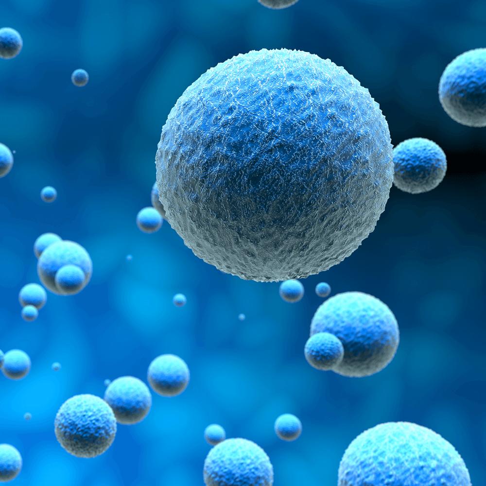 תאים צפים - תמונה להמחשה העובדה שכדי לשמור על בריאות הגוף כל תא ותא בגוף צריך להיות בריא